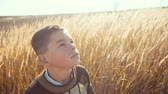 destino : Little boy on a wheat field in the sunlight in the view of the sky. Fresh air, environment concept and dreamy childhood. RAW video record.