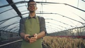 business : Hands of male gardener holding plant with ground. The man is standing at greenhouse. RAW video record. Stock Footage