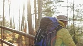 Man with backpack trekking in woods Stock Footage