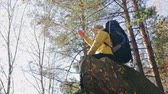 Hiker with backpack on rock Stock Footage