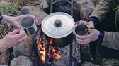 ısınma : Crop women having tea near campfire
