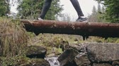 Group of hikers crossing a stream walking over a log of wood in a close up view of their moving feet.