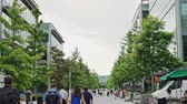 Young university students or employees on campus walking away from the camera along a tree lined avenue between modern commercial buildings Stock Footage