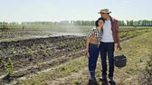 apaixonado : Embracing man and woman standing in green country field looking at each other with love in sunlight Vídeos