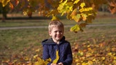 сентябрь : portrait of a beautiful little boy in the autumn park