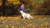 emocje : happy little girl of european appearance is having fun playing in the autumn park with a big beautiful dog