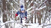 meninos : happy childhood - little cheerful boy climbing a tree in a snowy forest in winter