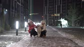 лабрадор : mom, daughter and dog walk in the winter park and look at the smartphone