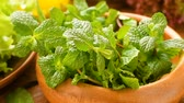 diet : Greens for fresh healthy salad