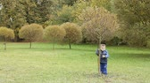 travessura : Little boy playing in the autumn park, shaking the tree and leaves are falling on him Vídeos