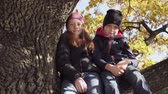 Cute friends little boy and girl sitting together on tree on sunny autumn day