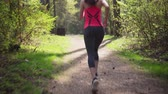 生活方式 : Fitness woman running in spring sunny forest
