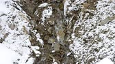 hydrology : Small mountain brook flowing on stony snow covered soil in winter. Stock Footage
