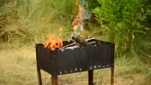 brasão : Wooden logs burning in a brazier in summer outdoors on blurred green grass background with beautiful fire in brazier. Shallow depth of field.