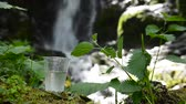 não urbano : glass of drinking water near the foliage waterfall Vídeos