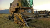 perfection : agriculture combine harvester. Wheat, rice, rye harvest. Side view of agricultural machine. Stock Footage