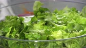 уксус : Lettuce Salad,adding dressing salt,oil,vinigar Стоковые видеозаписи