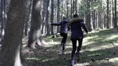 погоня : Chasing two girls in the dense pine tree forest Стоковые видеозаписи