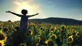 Girl at sunflower field opens hands wide backlit by sunset, slow motion