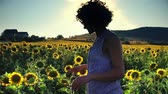 Women farmer on the background field of sunflowers. Farmer girl working on sunflower field with sunset sun shining.  Agriculture concept