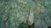 sable : Nature background of shallow water surface and beach stones