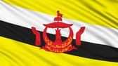 brunei : Brunei Flag, with real structure of a fabric