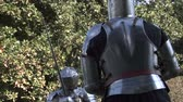 knight : Fighting medieval knights Stock Footage