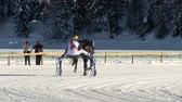 trotting : trotters and horses before White Turf Grand Prix on February 23rd, 2014 in St. Moritz Switzerland