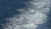 waterbird : Seagulls flying above the surface of the sea near the mediterranean coast Stock Footage