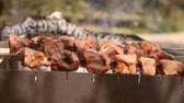 Barbecue With Delicious Grilled Meat and potatoes On Grill. Barbecue kebab Party. Charcoal grill.