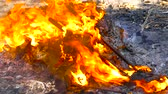 Garbage wastes are covered with flame in the environment of the ashes of the fire