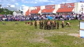 motorcyclists : BREST, BELARUS - MAY 27 2017: Demonstration performances of paratroopers on Brest Bike Festival International. Riding guests on motorcycles. Stock Footage