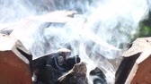 chafing : Coals burning in the brazier for gril Stock Footage