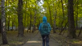 sarma : Schoolboy boy, with a knapsack behind his back going on the path among trees Stok Video