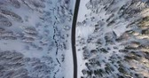 alto : Forward overhead vertical aerial above road,woods snowy forest at falzarego pass.Sunset or sunrise.Winter Dolomites Italian Alps mountains outdoor nature establisher.4k drone flight establishing shot