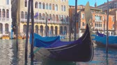 Венеция : Moored gondolas on The Grand Canal in Venice, Italy Стоковые видеозаписи