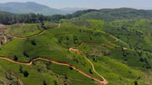 スリランカ : Tea plantations of Sri Lanka. Mountain view from above.