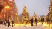 adornar : MOSCOW - DEC 17, 2018: Festive New Year and Christmas Holydays Moscow. Crowd of people walks among christmas trees on Manezhnaya square near Red Square and Kremlin. Bright lights shine on many Christmas trees. Passers-by are photographed against the backd Stock Footage