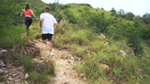 запустить : Young couple running on mountain trail. Стоковые видеозаписи