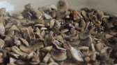 fungi : Grinded mushrooms roasting in pan. Stock Footage