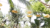 hanglamp : Lamps with abages from Vietnamese caps hang on a wire among coniferous trees and palm trees. Travel concept. Stockvideo