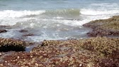 sea floor : Waves break against huge rock on the shore. Close up. Water splashes. Travel concept. Arabian sea, India, GOA.
