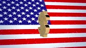 flaga : USA 3D animations American dollar