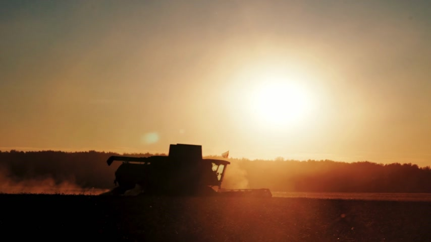 sklízet : silhouette of combine which harvesting wheat on the field on sunset Dostupné videozáznamy