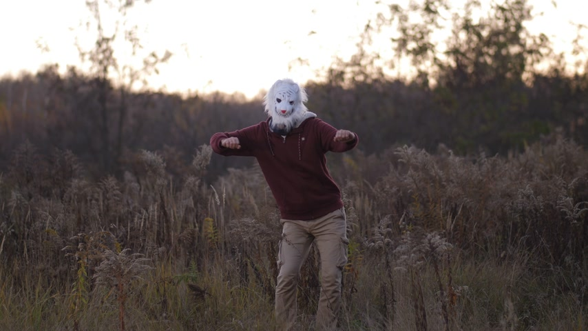 pesadelo : General plan. In the autumn field, a high guy in a bear mask dances 4K Slow Mo
