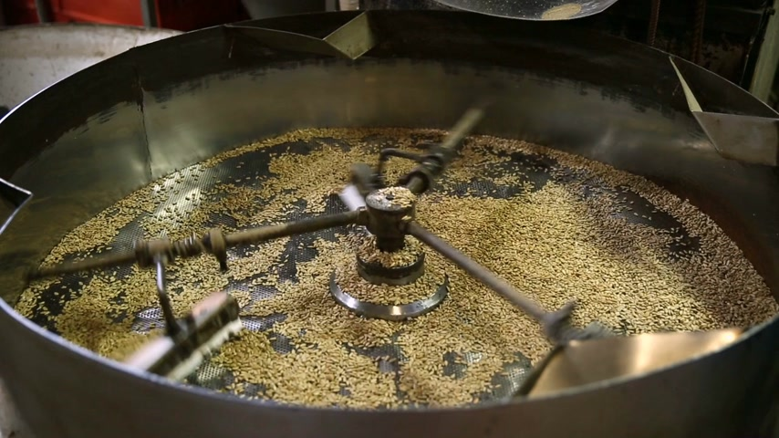шелуха : Fried kernels of sunflower seeds are poured into the drum for cooling. Seed production. In one file there are many frames of this process at different sizes. Стоковые видеозаписи