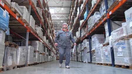 przesyłka : A camera in motion accompanies the warehouse worker. A man goes with a folder between the shelves with the goods. 4K Slow Mo Wideo