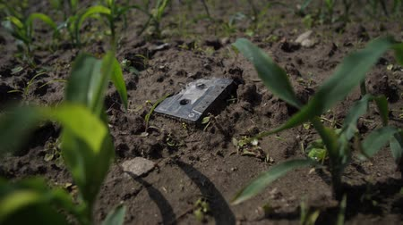 kompakt : The old tape cassette is broken on the ground. Young plants are sprouting around as a symbol of the new digital age. 4K Slow Mo