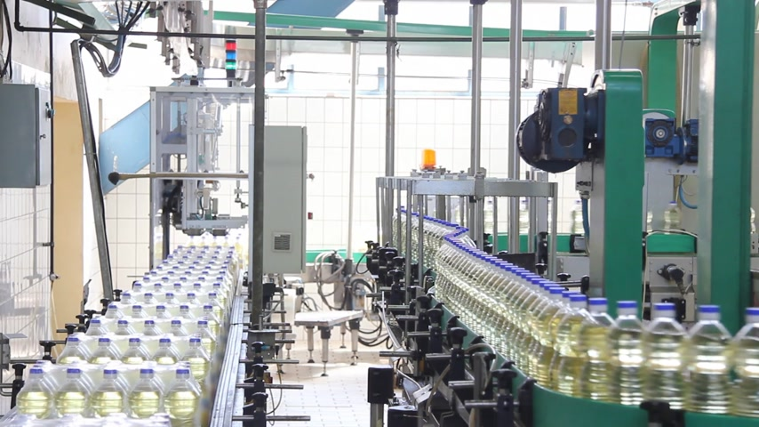 warzywa : Sunflower oil in the bottle moving on production line in a factory Wideo