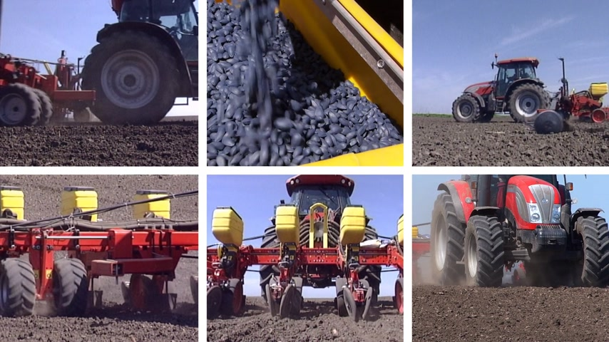 sojový : Planting Corn, Soybean, Sunflower Seed